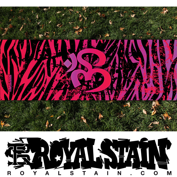 RS18 Zebra 1